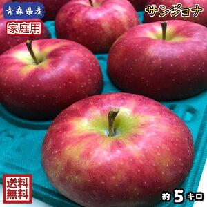 奇跡の再入荷!!【送料無料】青森県産 サンジョナ 家庭用 5kg(約5キロ) 中生種りんご 食品 果物 フルーツ お取り寄せグルメ