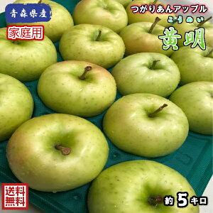 【常温便送料無料】青森県産 黄明(こうめい) 家庭用 5kg(約5キロ) 早生種りんご つがりあんアップル 食品 果物 フルーツ お取り寄せグルメ