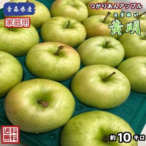 【常温便送料無料】青森県産 黄明(こうめい) 家庭用 10kg(約10キロ) 早生種りんご つがりあんアップル 食品 果物 フルーツ お取り寄せグルメ
