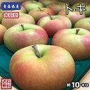 在庫限り!今だけ特別価格!【送料無料】青森県産 トキ 家庭用 10Kg(約10キロ) 中生種りんご 食品 果物 フル…