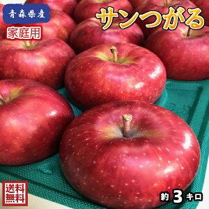 在庫残りわずか!今だけ特別価格!【クール便送料無料】お試し品!青森県産 サンつがる 家庭用 3kg(約3キロ) 早生種りんご 食品 果物 フルーツ お取り寄せグルメ