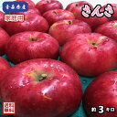 【クール便、送料無料】お試し品!青森県産 さんさ 家庭用 3kg(約3キロ) 早生種りんご 食品 果物 フルーツ お…