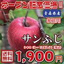 【送料無料】お試し品! 青森県産 サンふじ 家庭用 3Kg(約3キロ)  晩生種りんご 食品 果物 フルーツ お取り寄せグルメ