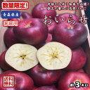 奇跡の入荷!【送料無料】青森県産 おいらせ 家庭用 3kg(約3キロ) 中生種りんご 食品 果物 フルーツ お取り寄…