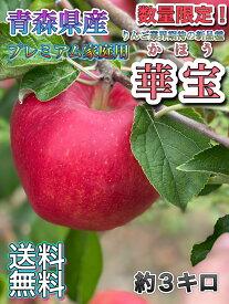 奇跡の入荷!りんご業界、期待の新品種!【クール便送料無料】青森県産 華宝 (かほう) プレミアム家庭用 3kg(約3キロ) 中生種りんご 食品 果物 フルーツ お取り寄せグルメ