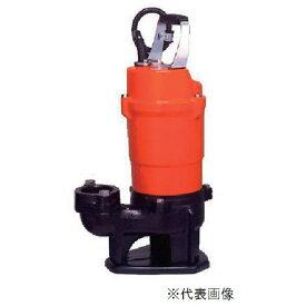 寺田ポンプ製作所 水中スラリーポンプ SSX-500(50Hz 単相100V)