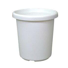 アップルウェアー 長鉢 F型 9号 ホワイト
