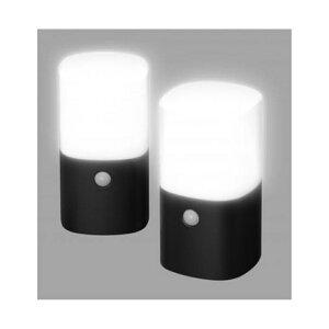 アイリスオーヤマ 乾電池式LEDガーデンセンサーライト (2個セット) ZSL-MN1K-BKS2 [ブラック]