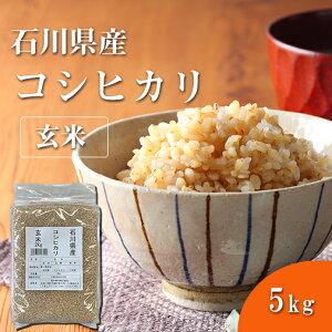 福井精米 令和元年度産 石川県産 こしひかり玄米 コシヒカリ お米 5kg