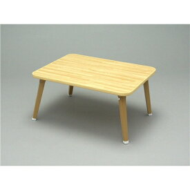 武田コーポレーション 折りたたみテーブル ちゃぶ台 持ち運び 軽量 アウトドア ローテーブル W60×D45×H29cm OTB-6045NA