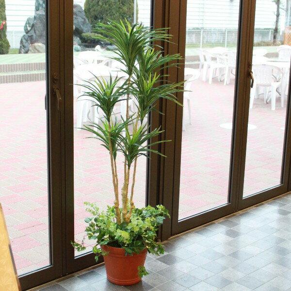 観葉植物 大型 造花 ユッカプラント 140cm TKD 造花 フェイクグリーン 新築 開店 開院 祝い 人工観葉植物 snb
