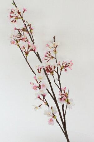 みやび桜の大枝