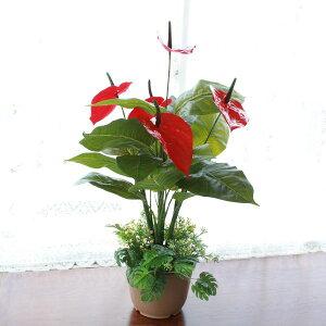 造花 アンスリウムの鉢植え 65cm 観葉植物 シルクフラワー CT触媒