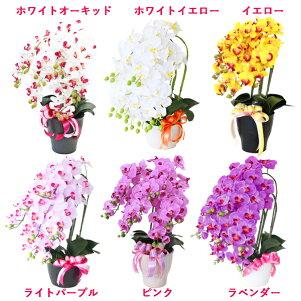 【CT触媒】常滑産陶製鉢に入った造花の胡蝶蘭の鉢植え