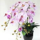 造花 常滑産陶製鉢に入った迫力ある大きな胡蝶蘭の鉢植三本立 大輪 3本立ち ギフト プレゼント シルクフラワー 造花 C…