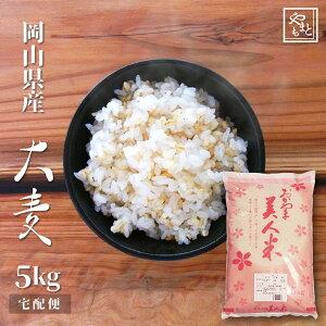 令和元年  新麦 国産大麦(丸麦) 5kg もち麦の代わりに 送料無用 安い お試し おすすめ ポイント消化 ぽっきり 岡山県産100% ダイエット健康美容