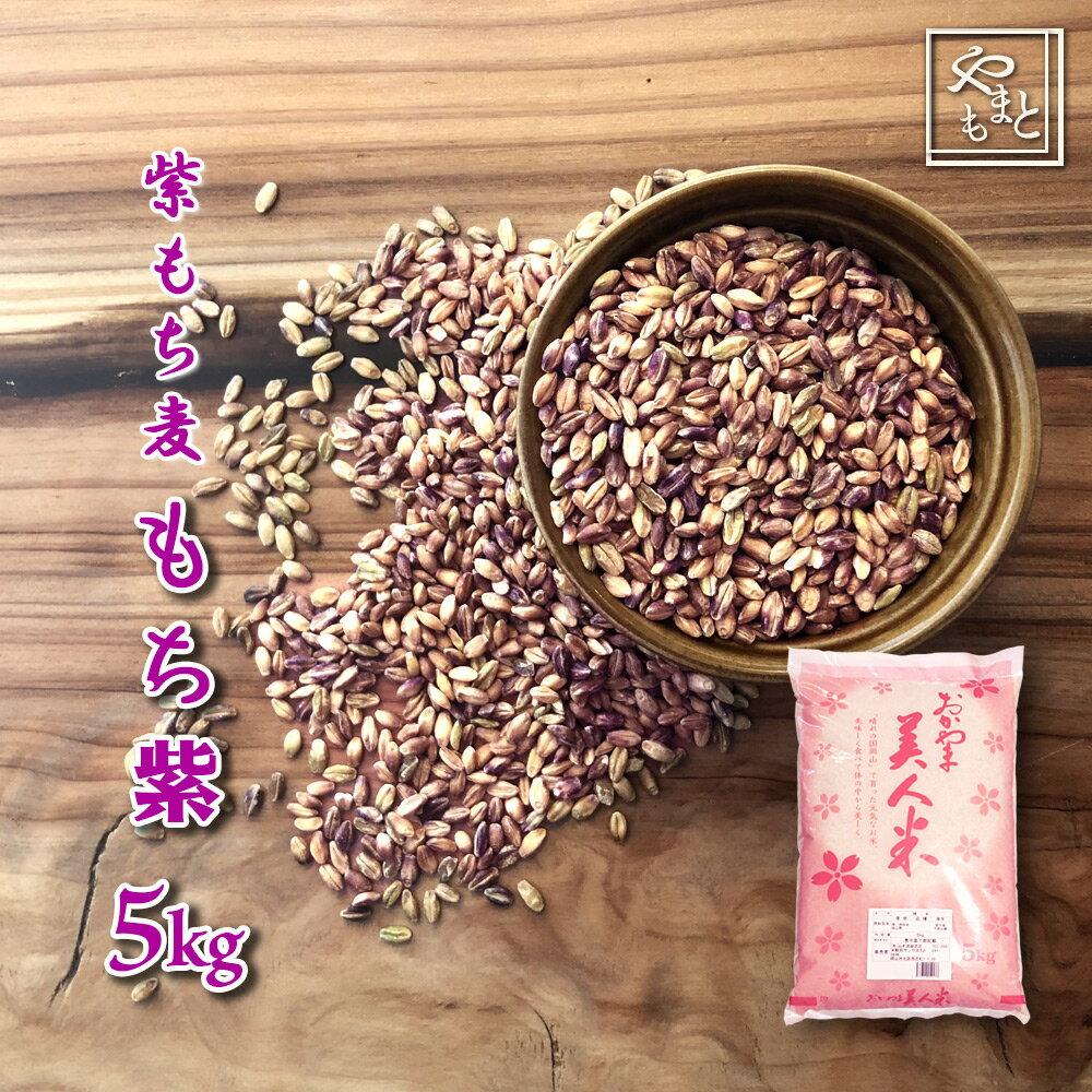30年度岡山県産 紫もち麦(ダイシモチ) もち紫 5kg  送料無料 安い おすすめ ダイエット健康美容 5キロ