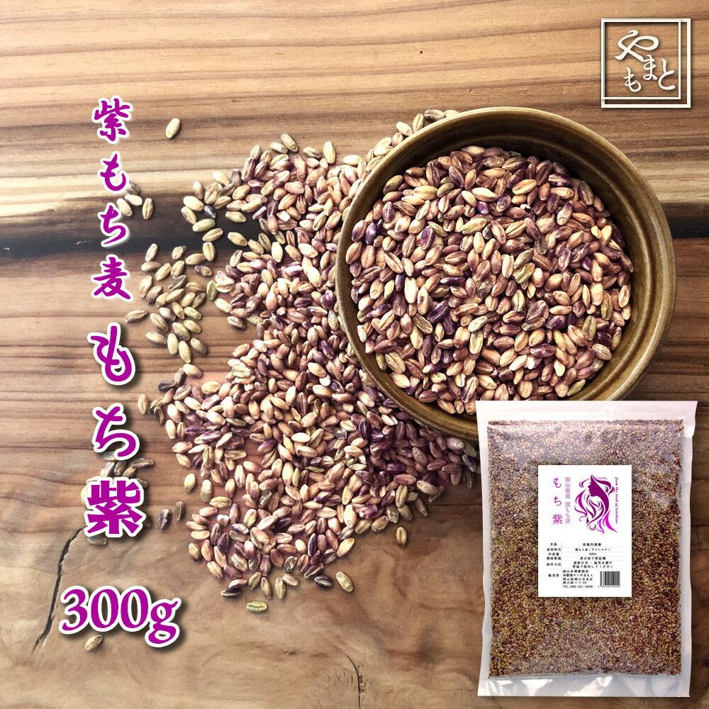 30年度岡山県産 紫もち麦(ダイシモチ) もち紫 300g  送料無用 安い お試し おすすめ ポイント消化 ぽっきり ダイエット健康美容 メール便