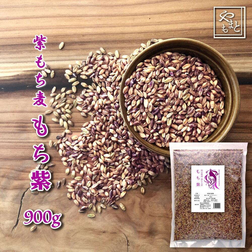 30年度岡山県産 紫もち麦(ダイシモチ) もち紫 900g  送料無用 安い お試し おすすめ ポイント消化 ぽっきり ダイエット健康美容 メール便
