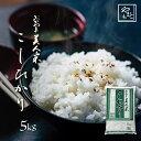 令和元年 新米 岡山県産こしひかり お米 送料無料 5kg 5kg×1袋 安い コシヒカリ 5キロ 一等米 北海道沖縄離島は追加送料