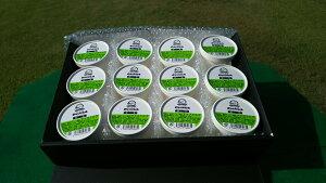 『抹茶アイス』 100g 12個セット アイスクリーム 抹茶 アイス まっちゃ 抹茶アイスクリーム カップアイス スイーツ まとめ買い セット 取り寄せ お取り寄せ 贈り物 送料無料