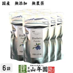 【国産】 ブルーベリー粉末 50g×6袋 無農薬で栽培されたブルーベリーを粉末に 無添加 果実本来の甘みをアイス ヨーグルトに 健康 送料無料 国産 緑茶 ダイエット ギフト プレゼント お年賀