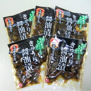 宮崎県産 きゅうり醤油漬け 5袋