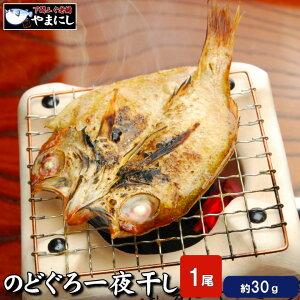 下関のどぐろ開き干し1枚です 極小 とてもとても小さいです (高級魚 のどぐろ 干物 一夜干し 開き 旬干し 国産 干物 セット ノドグロ のど黒 お中元 ギフト おせち おせち料理 お正月 魚 魚料