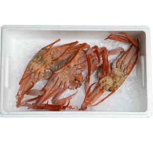 【3匹〜4匹1kg以上】冷凍 訳あり 日本海の 茹で 香住がに (紅ズワイガニ)  ボイル 香住産 3匹〜4匹1kg以上[冷凍][ゆで香住かに 3-4匹1kg以上]