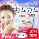 【定期購入】「カムカム-junsui-(純粋)」アマゾンの美の果実「カムカム」を使った高品質な天然ビタミンCサプリ!