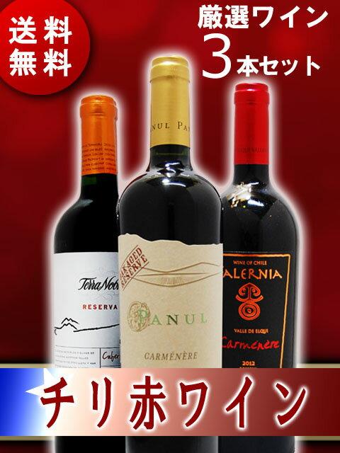 【送料無料】【チリ 赤ワイン】 厳選チリ赤ワインセット (750ml×3本) 【3本セット】【2667】【父の日・お中元】