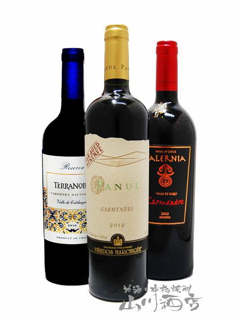 【 送料無料 】【 チリ 赤ワイン 】 厳選チリ赤ワインセット ( 750ml×3本 ) 【 3本セット 】【 2667 】【 母の日 父の日 お花見 退職祝 贈り物 ギフト プレゼント 】