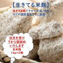 【送料無料】 生米こうじ 1kg×2 生きた糀 会津産コシヒカリ使用 酵素の働きが活発 冷凍保存可能 発酵食品作りに最適 …