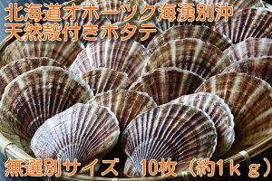 北海道オホーツク湧別沖 天然殻付きホタテ サイズ無選別10枚(約1.0kg)ほたて BBQ 天然