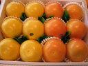 グレープフルーツルビー6個ホワイト6個入り送料無料(北海道、沖縄除く)【楽ギフ_包装選択】【楽ギフ_のし宛書】【楽…