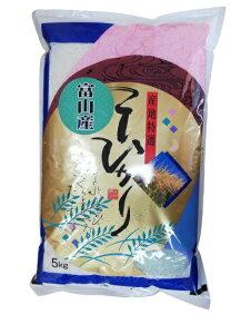 お米 5kg 富山県 コシヒカリ 令和2年産 白米 5kg×1袋