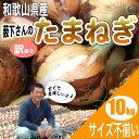 和歌山県産 薮下さんの特別栽培 新たまねぎ 新玉葱 訳あり 10kg 送料無料 淡路島産 九州産 北海道産にも負けない品質 …