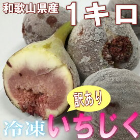 和歌山県産 訳あり 冷凍いちじく 1kg