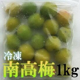 冷凍 南高梅 和歌山県産 1kg(500g×2) 送料無料 訳あり サイズ不揃い 梅酒 梅ジュース用南高梅 紀州南高梅
