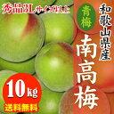 【予約受付開始】和歌山県産 南高梅 青梅 秀品 10kg 3Lサイズ以上(3L〜4Lサイズ混合) 送料無料 南高 あおうめ …