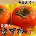 和歌山県産 訳あり 富有柿 5kg (サイズ不揃い ご自宅用) 【送料無料】種あり甘柿