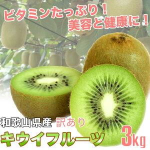 和歌山県産 訳あり 国産 キウイフルーツ 3kg バラ詰め ご自宅用【送料無料】