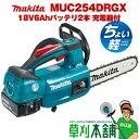 マキタ(makita) 充電式チェンソー MUC254DRGX スプロケットノーズバー 250mm 18V6Ahバッテリ2本 充電器付 カラー/青