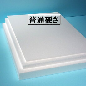 発泡スチロール 板 断熱材 2枚 600mm×450mm×厚さ100mm 普通硬さ