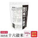 国内産十六穀米 業務用500g【06】