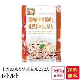 レトルトご飯 国内産十六穀類と発芽玄米のごはん160g×36食入り【04】