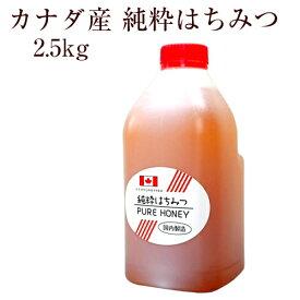 業務用 カナダ産純粋はちみつ 2.5kg(ボトル)【創業74年 やまと蜂蜜厳選】