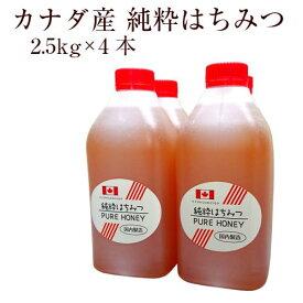 業務用 カナダ産純粋はちみつ 2.5kg×4本(ボトル)【創業74年 やまと蜂蜜厳選】
