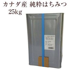 業務用 カナダ産純粋はちみつ 25kg(一斗缶)【創業74年 やまと蜂蜜厳選】