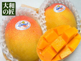 【4月上旬以降予定★】日本向けの航空便マンゴーをお届け★メキシコ産 お試しアップルマンゴー[2個入り]【送料無料】